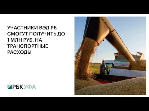 Участники ВЭД РБ смогут получить до 1 млн руб. на транспортные расходы