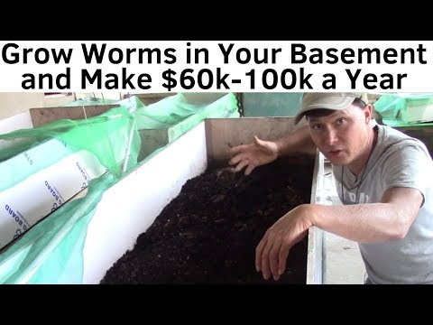 , title : 'Make $60K-$100K a Year By Growing Worms in Your Basement