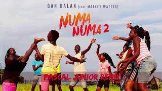 Dan Balan   Numa Numa 2 (feat. Marley Waters) | Pascal Junior Remix