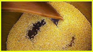 Der Nutzen von Hirse, dem einzigen alkalisierenden Getreide