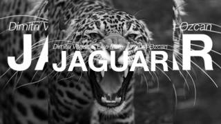 Dimitri Vegas & Like Mike vs. Ummet Ozcan - Jaguar (Original Mix)