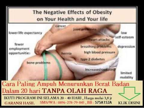 Program pelatihan penurunan berat badan yang tepat