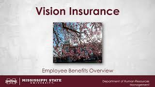 Vision Insurance Video