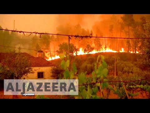 Portugal mourns after country's worst forest fires in decades