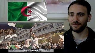 L'Algérino   ALGERIE Mi Amor رد الفعل الأمريكي على AMERICAN REACTION