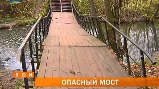 Полчища крыс облюбовали мостовой переход через речку Данилиху