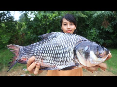 Yummy cooking big fish recipe – Cooking skill