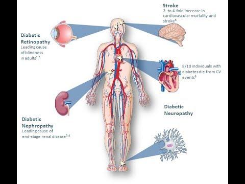 Les valeurs de linsuline dans le sang
