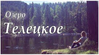 Горный Алтай. Озеро Телецкое.  #1