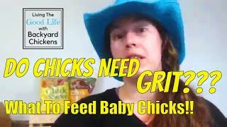 What to Feed Your Chicks: Do Chicks Need GRIT??