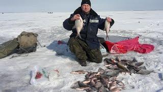 Зимния рыбалка эхолоты