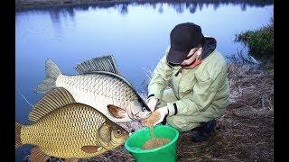 Прикормочные смеси для рыбалки своими руками