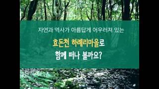 [카드뉴스] 효돈천 하례리마을로 함께 떠나볼까요?