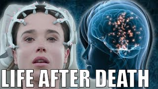 Scientists Discover Your Brain Still Works After Death