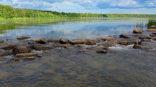 Where Does The Mississippi River Begin? Lake Itasca, MN 4K video