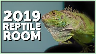 2019 Reptile Room Tour!