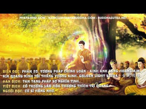 Phẩm 20. Vương Pháp Chính Luận - Kinh Ánh Sáng Hoàng Kim