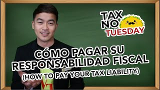 How to Pay Your Tax Liability