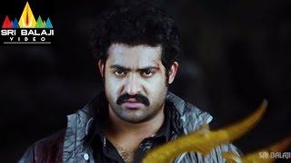 Shakti Telugu Full Movie Part 14/14  JrNTR Ileana  Sri Balaji Video