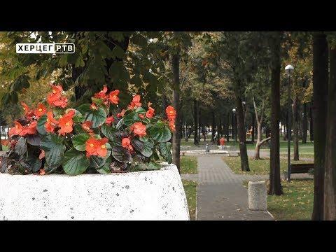 Intermeco: Jesenja šetnja gradom (VIDEO)