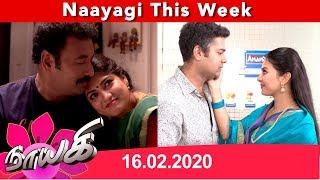 Naayagi Weekly Recap 16/02/2020