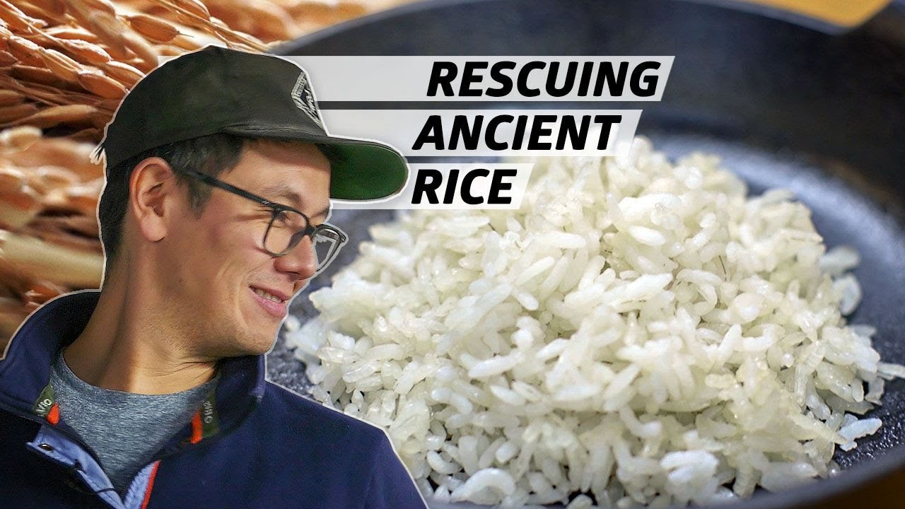 How Anson Mills Saved Ancient Grains of Rice From Extinction — Rooted thumbnail