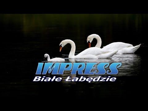 BIAŁE ŁABĘDZIE - IMPRESS (karaoke)