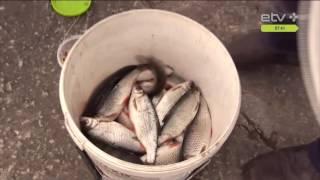 Светящиеся крючки для рыбалки