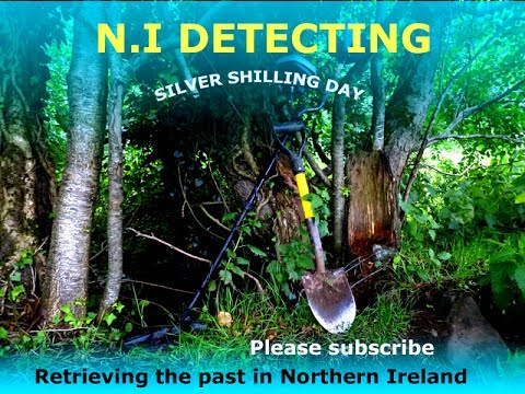 N.I Detecting - Silver Shilling Day
