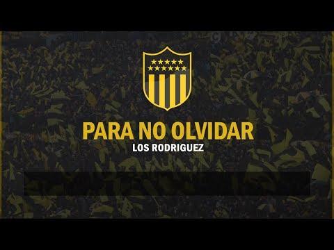 """""""""""Ya no saben como parar a esta hinchada"""" - PEÑAROL"""" Barra: Barra Amsterdam • Club: Peñarol"""
