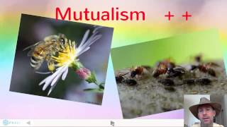 Ecological Interactions