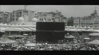 اغاني حصرية بشار درويش القلب يعشق تحميل MP3