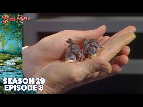 Bob Ross - Trapper's Cabin (Season 29 Episode 8)
