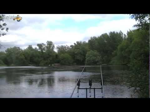 The Local Pond Part 7 – Summer- Carp Fishing