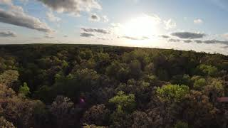 Dji fpv flying above the trees, into the sunset