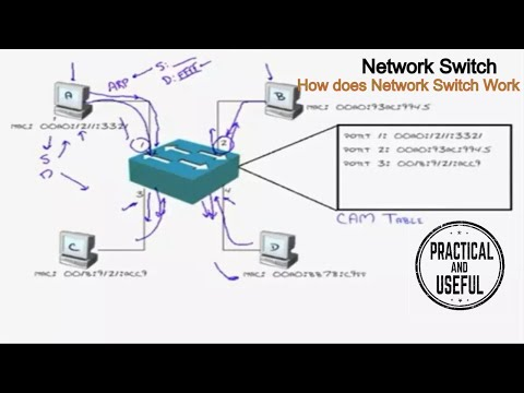 Network SWITCH – Fundamental concepts EXPLAINED – How does Network SWITCH WORK