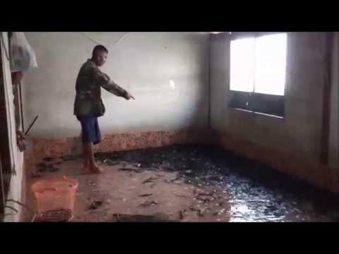洪水過後一家人回到家中 卻被客廳的東西給嚇壞!