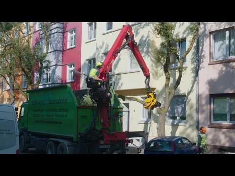 Kettwiger Baumdienst: Renault Truck & GMT050