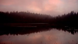 4 TRUE SCARY Lakes And Rivers Haunting Ghost Stories