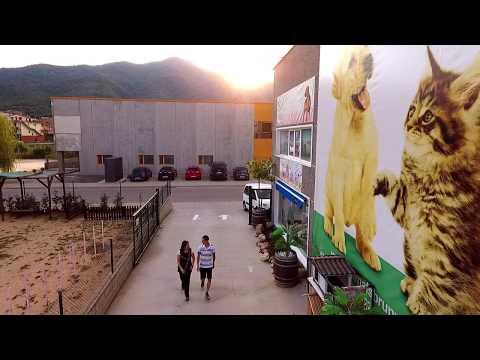 Animals Brunyola: Tienda de animales Girona