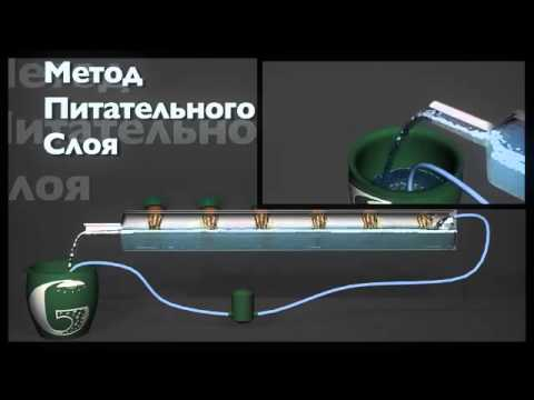 Гидропонные установки