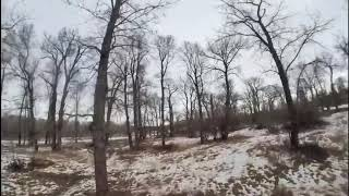Emax Tinyhawk 2 Race - 2S FPV - INSTA360GO - Quick Flight Over a New Spot (Ends Predictably)