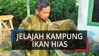Jelajah Kampung Kukupu, Ada Puluhan Petani Budidaya Ikan Hias di Pusat Kota Bogor