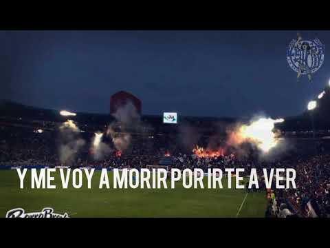 """""""No me arrepiento de este amor"""" Barra: Barra Ultra Tuza • Club: Pachuca"""
