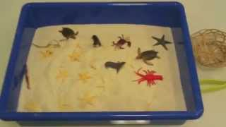Sand Sensory Bin: Sea Animals:Preschool Activity