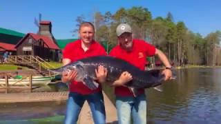 Рыболовный клуб золотой сазан в поливаново