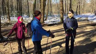 Reconnaissance marche nordique en forêt de Larçay