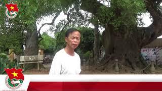 Di tích Cây Dã Hương và Đình viễn Sơn