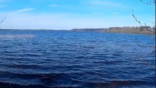 Платная рыбалка в всеволожском районе