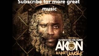 03 - Akon CaShin Out (Re-remix).wmv